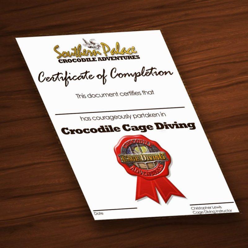 Certificate 1024x1024 800x800 - Southern Palace
