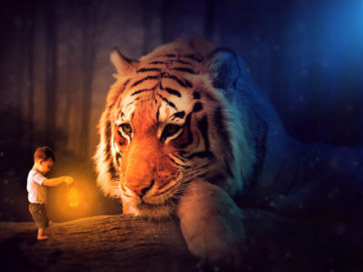 Oliver Tiger 1024x691 400x300 - Photo Manipulation