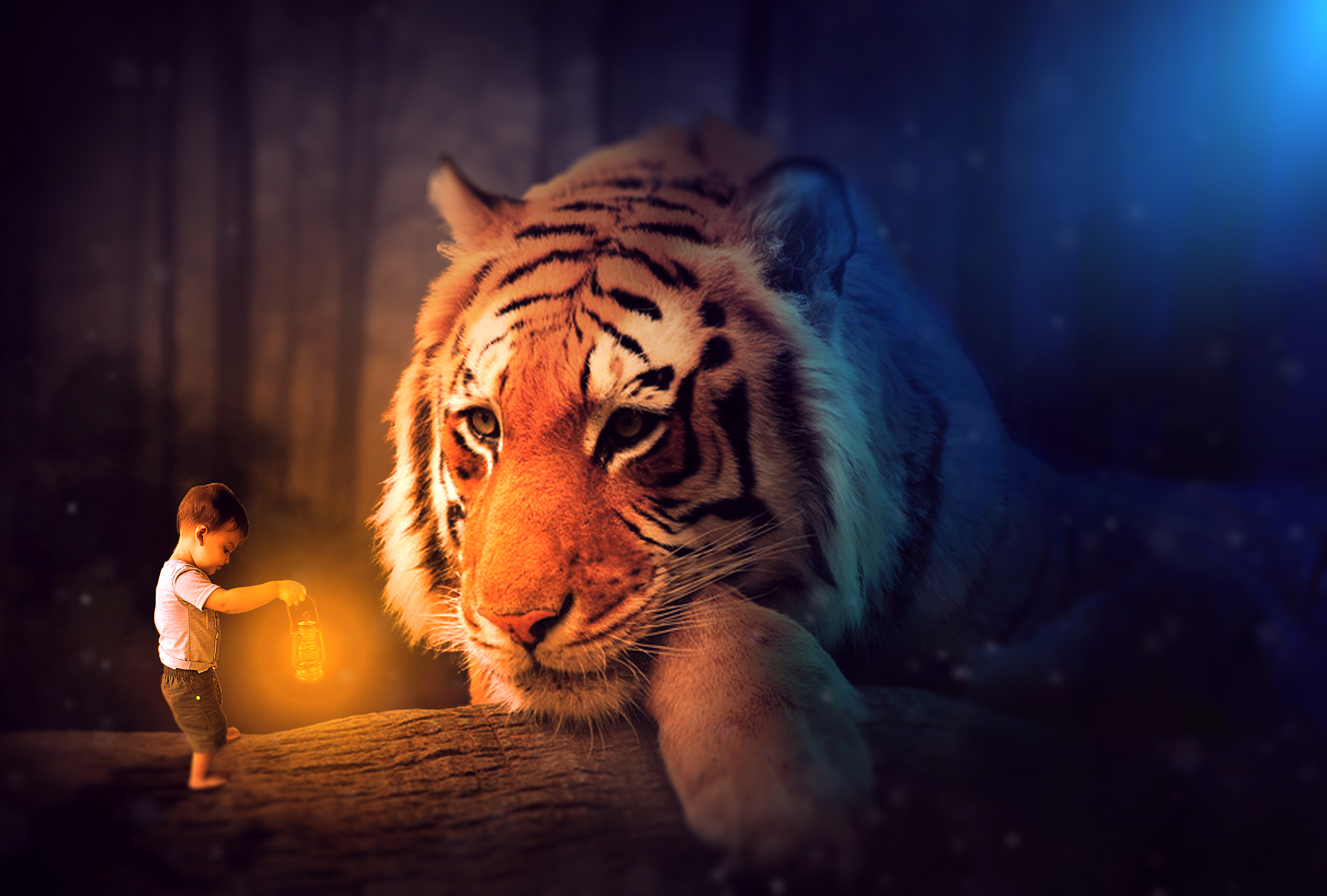 Oliver Tiger - Photo Manipulation