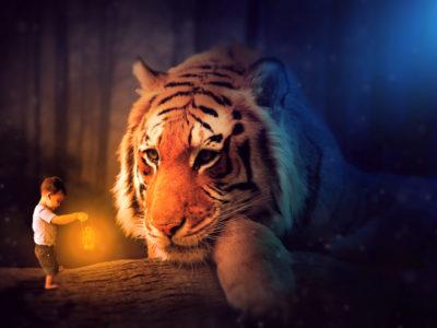 Oliver Tiger